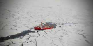 They're everywhere: New study finds polyester fibers throughout the Arctic Ocean