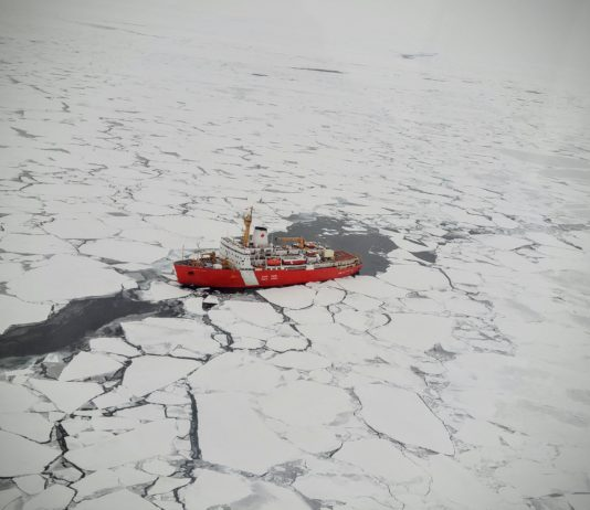 Canada promises two Arctic icebreakers as part of pre-election job boost