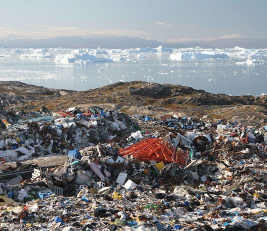 West Greenland's plastic litter mostly comes from local sources, study finds