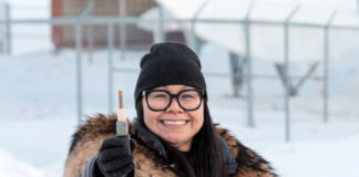 A new undersea fiber-optic cable for Nunavut competes against the territorial government's plans