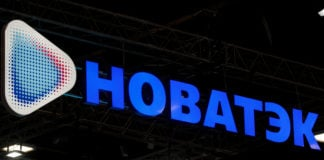 Rosatom, Novatek join Arctic Economic Council