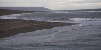 Indigenous groups are slowly gaining more say in the management of a swiftly changing northern Bering Sea