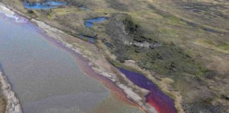 Nornickel must pay €1.62 billion for a huge Arctic oil spill