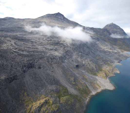 Five Eyes alliance urged to forge ties with Greenland to secure minerals