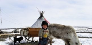 Indigenous peoples call on Nornickel's global partners to demand environmental action