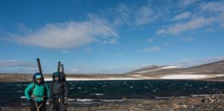 Ancient plant DNA and pollen found under Baffin Island lake show a greener Arctic