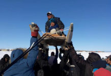 The Nunavut Quest sled dog race is cancelled for the second year in a row