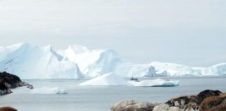 Greenland ice melt may accelerate as glaciers get shorter, study finds