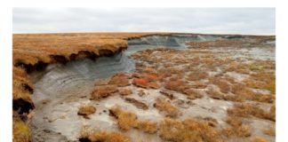Russia proposes a nationwide permafrost monitoring program