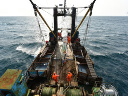 A long-awaited Central Arctic Ocean commercial fishing ban takes effect