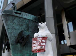 IMO adopts an Arctic heavy fuel oil ban