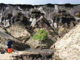 Scientists find the oldest permafrost yet discovered  in Siberia