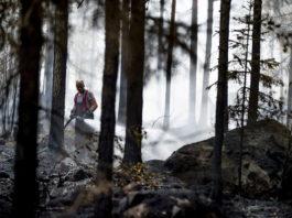 Finland's worst wildfire in decades is raging through a northwest forest