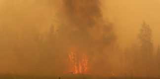 Vast wildfires in Russia's Yakutia have already set an emissions record