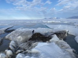 Swiss-Danish expedition finds the world's northernmost island