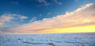 Record-breaking winter winds have blown old Arctic sea ice into the meltzone