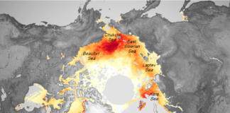 2 NASA scientists explain what's driving overall Arctic sea icedecline