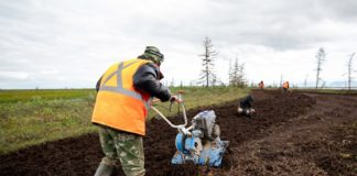Nornickel begins land reclamation of soil contaminated by oil leak
