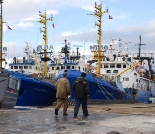 Norwegian and Russian cod fleets will see a 20 percent cut in Barents Sea quotas