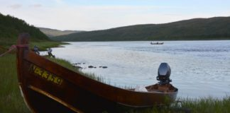 Researchers see an early glimmer of hope for Teno River salmon